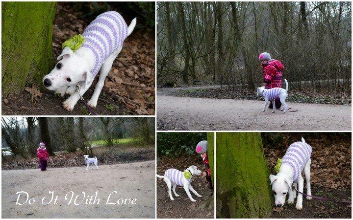 Hunde-Pullover häkeln - alle Größen // DIY