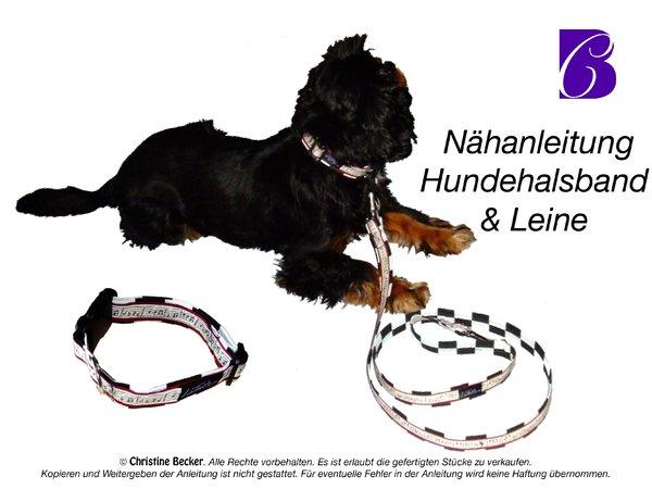 Nähanleitung Hundeleine und Hundehalsband ✓