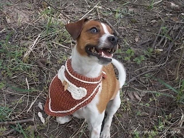 Häkelanleitung Hundehalstuch Dog Style Design No.5