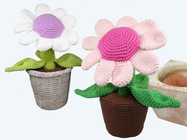 Blume Häkeln Topfblume Topfpflanze Diy