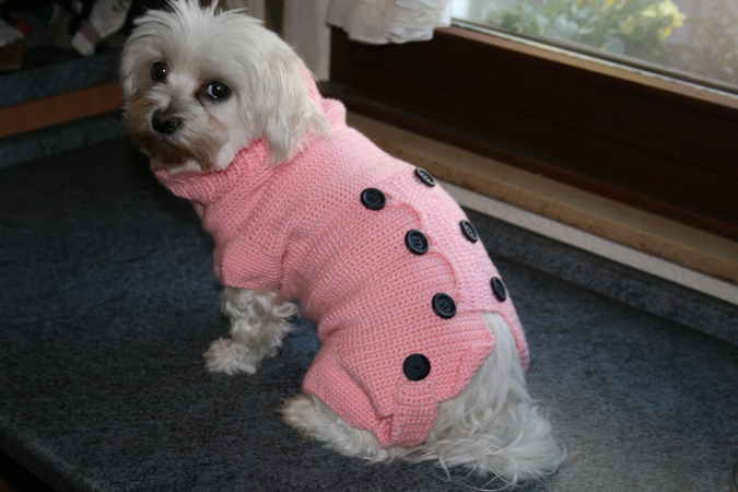 Strick Und Häkelanleitung Hundemantel Hundepullover Mandy Gr Xs