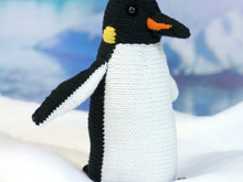 Roald the Intrepid Penguin