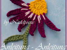 Applique Echinacea crochet pattern