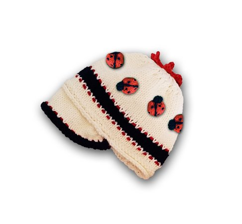 Ladybug Baby Beanie Cap and Booties