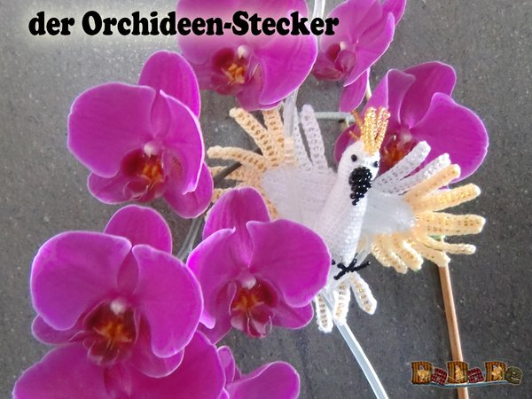 blumen orchideen stecker kakadu nicht nur f r muttertag. Black Bedroom Furniture Sets. Home Design Ideas
