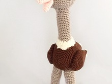 A nice pattern of a cute Ostrich,