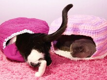 DIY Cat- and Dog Cave - Crochet pattern