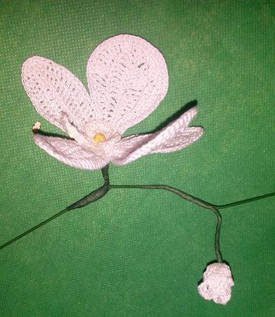 orchideen h keln topf blumen h keln deko. Black Bedroom Furniture Sets. Home Design Ideas