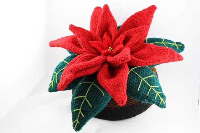 Decorative Poinsettia