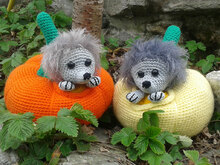 "Crochet Pattern ""Hedgedog in Pumpkin"""