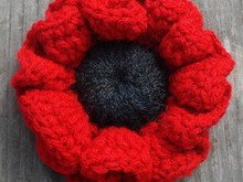 Poppy flower crochet pattern 024