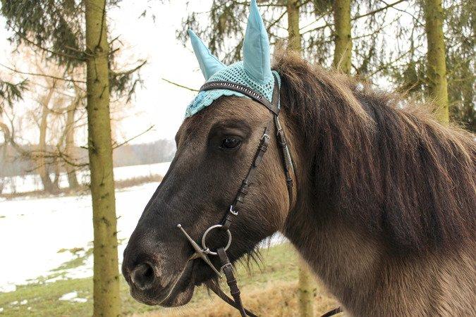Häkelanleitung Fliegenmütze Ohrenhaube Für Pferd Oder Ponny