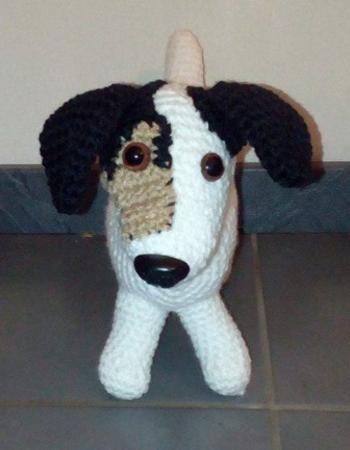 Jack Russel Terrier Jack