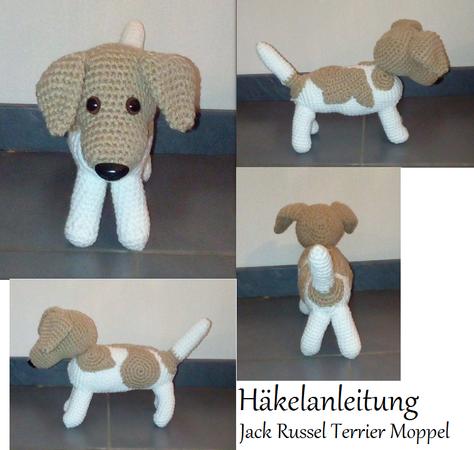 Jack Russel Terrier Moppel