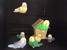 Crocheting Instructions Budgie