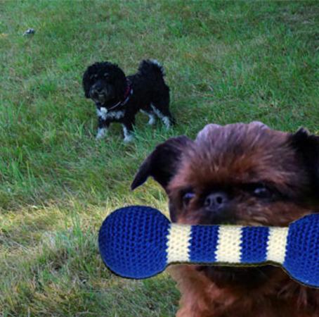 Häkelanleitung Hundespielzeug \