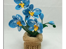 Butterfly Orchid - Crochet Tutorial