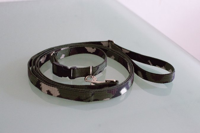 Hundehalsband + -leine