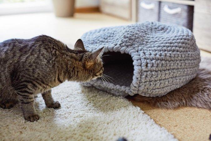 Gehäkelter Katzenkorb Aus Schurwolle