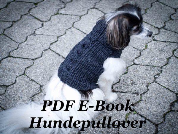 E Book Anleitung Hundepullover Mit Zopfmuster Für Anfänger Und