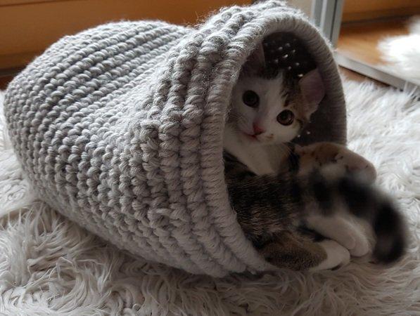 Katzenhöhle Häkelanleitung