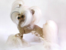 105 Crochet Pattern - Chinese Crested dog - Amigurumi PDF file by Chirkova CP