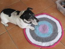 Hunde Pullover Häkeln Alle Größen Diy