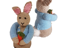 Peter Rabbit Crochet Toy