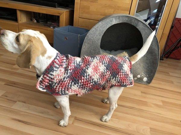 Hundemantel Häkeln Warm Durch Den Winter