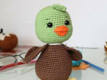 Green Duck Grucky