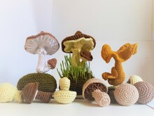 Pattern Mushrooms